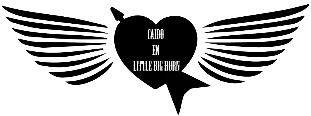 CAIDO EN LITTLE BIG HORN BLOG