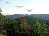 Mentre pugem al Puig de la Caritat, cap a llevant es pot veure el Puigsacalm i les Cingleres de Cabrera