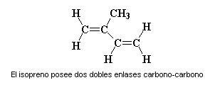 Caucho sintetico estructura