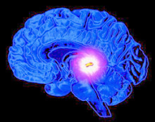 Latest article on JRSG site: Future of human consciousness involves 'third eye' pineal gland?
