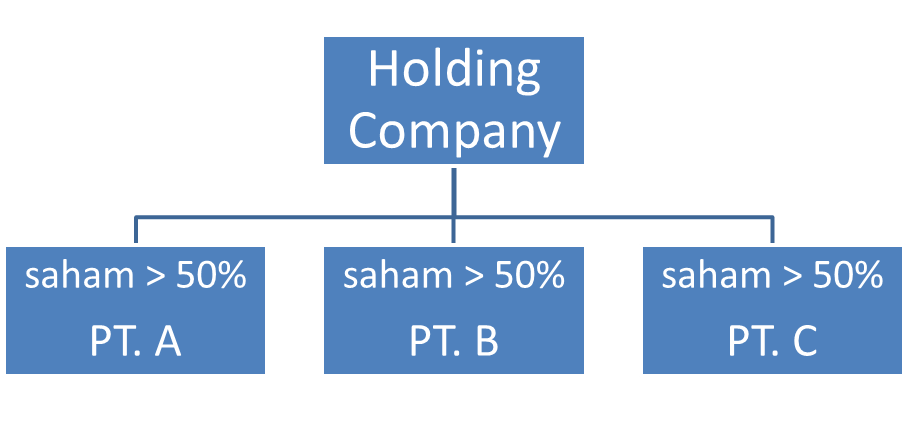 limited holding company