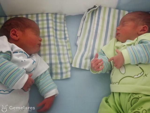 Mãe de gêmeos univitelinos, Dionéa Kirchner conta sua história