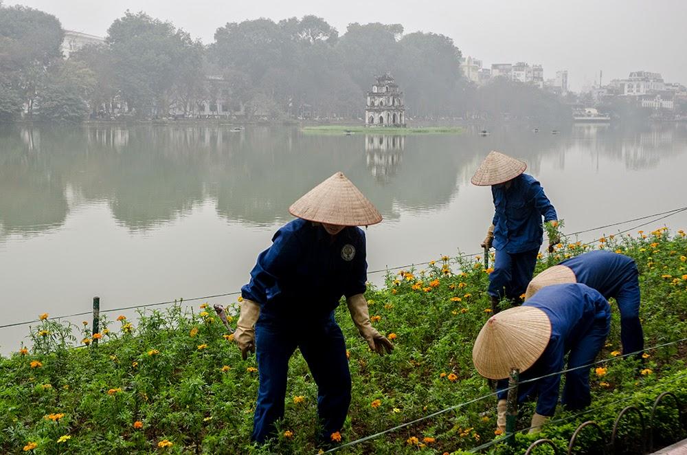 Soffia il vento dell 39 est caff e tartarughe for Lago per tartarughe