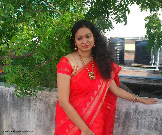 saree lookbook