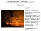 Cuento Juan Salvador Gaviota