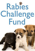 The Rabies Challenge Fund