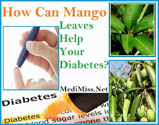 How Can Mango Leaves Help Your Diabetes?