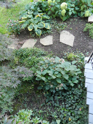 The Annex front garden cleanup after by Paul Jung Gardening Services Toronto