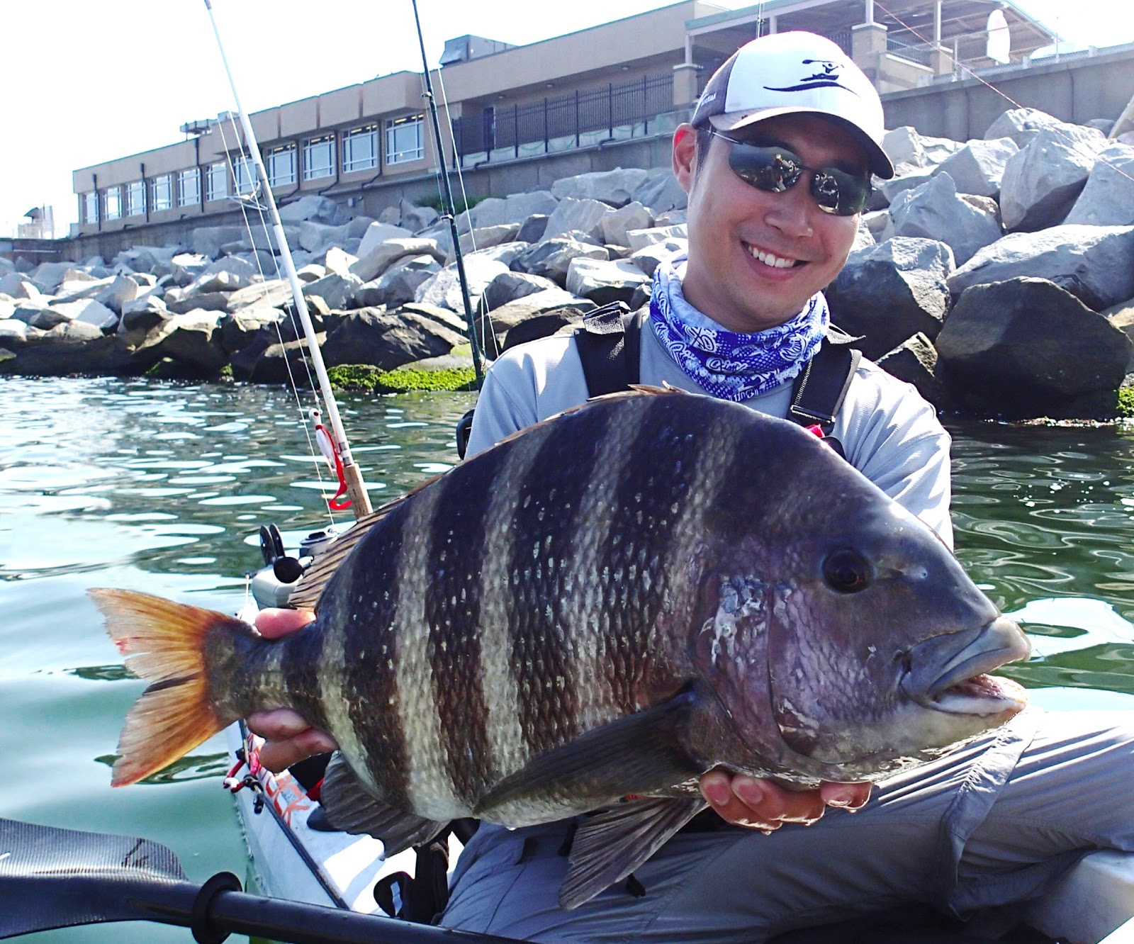 Angling addict slump busting convict for Sheepshead fishing rigs