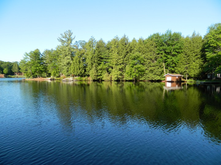Summer morning Lake Muskoka by garden muses: a Toronto gardening blog