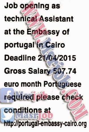وظائف سفارة البرتغال