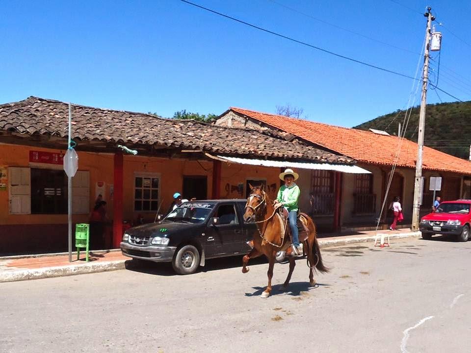 Fiestas San Pedro 2014. (Haga clic en la imagen para ver el álbum correspondiente)