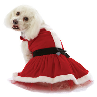 Holiday Clothes for Pets