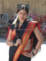 Sangeetha, hot, navel, saree, pictures