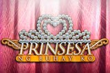 Prinsesa ng Buhay Ko tells the story of Princess, a hardworking young woman who was orphaned at a young age. Despite being raised in a foster home, Princess is strong-willed […]
