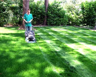 A motivational story on feedback- A boy working on the lawn.
