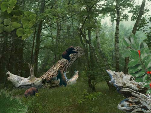 Nature Wallpapers AnimatedAmazing Architecture HomesAmazing DesignAmazing PhotosAmazing WallpaperAmazing Ancient