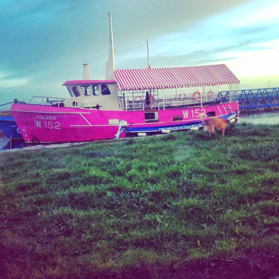 Pink boat Galway