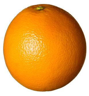 ttar_orange_01_h_launch.jpg