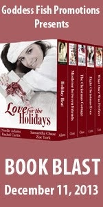 Love for the Holidays - Book Blast
