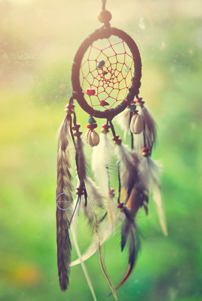 dreamer dream catcher