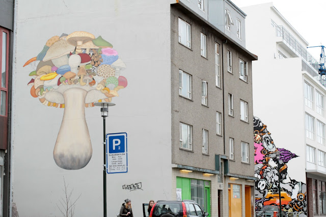 Turn any corner in Reykjavik and you are likely to find a building with something painted on the side.  Graffiti or art…?