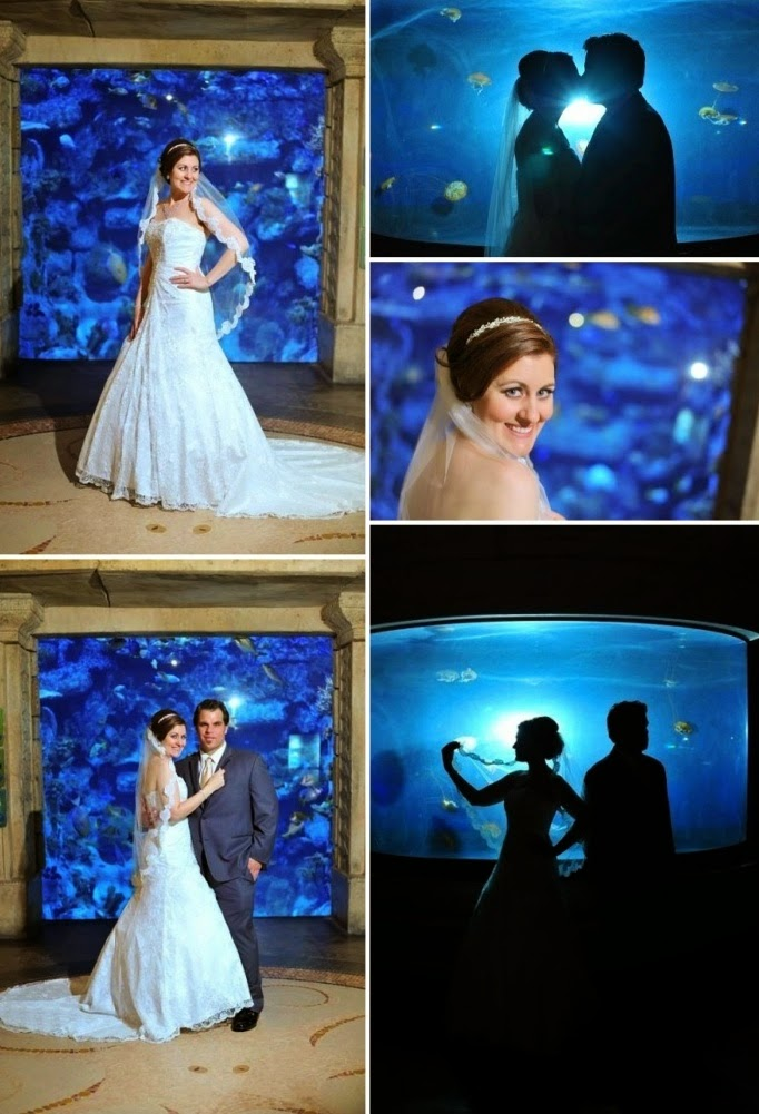 Wedding Shark Reef Wedding Reception In Las Vegas