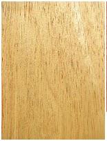 kayu karet