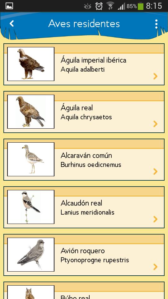 Aves Residentes Parque Nacional Cabañeros Aplicación Movil