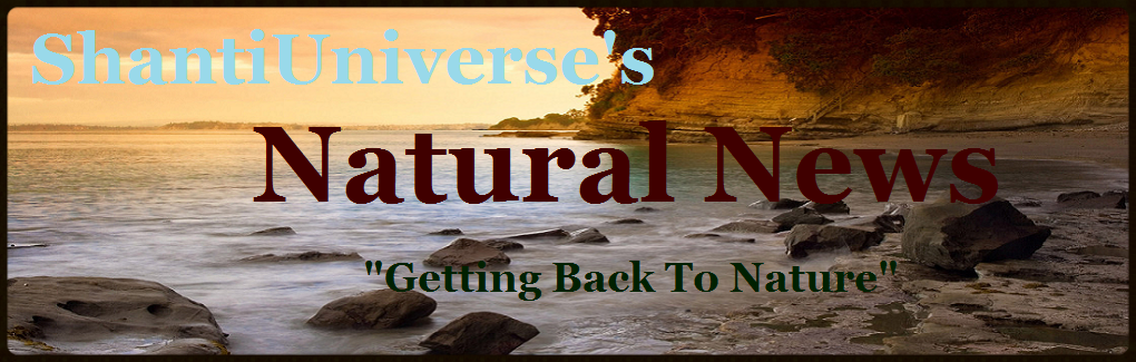 ShantiUniverse's Natural News