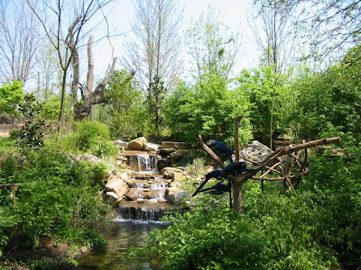 Nashville zoo coupons discounts