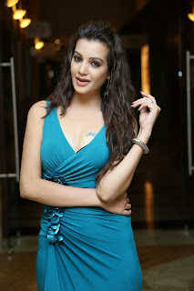 Diksha Panth New  Spicy Picture Shoot Stills013.jpg