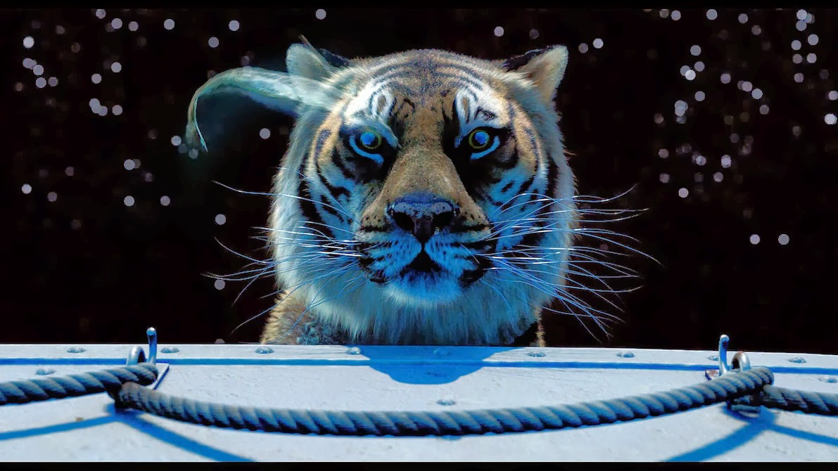 Life Of Pi Quotes I Love You Richard Parker : Life Of Pi Quotes Explained. QuotesGram