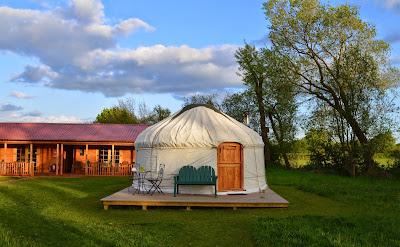 Acorn glade - daisy yurt