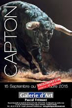 LE HAVRE : EXPOSITION PERSONNELLE DE CAPTON À LA GALERIE PASCAL FREMONT