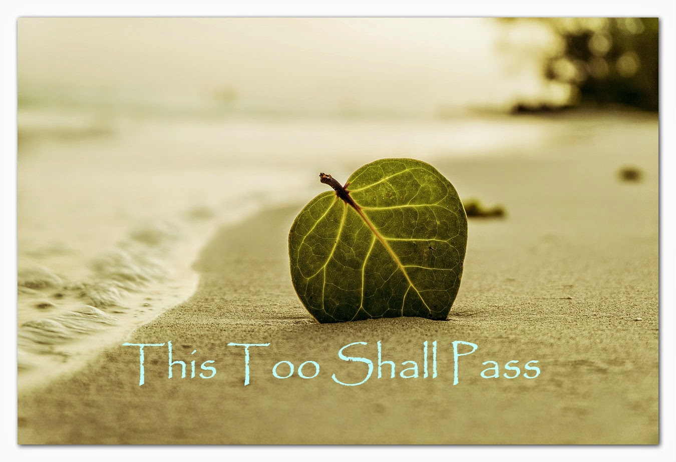 Something About Me Saturday:  This Too Shall Pass --How Did I Get Here? My Amazing Genealogy Journey