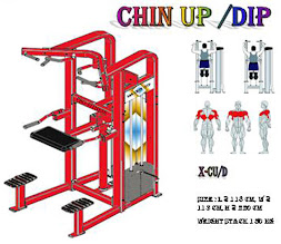 Chin Up Dip Machine Red