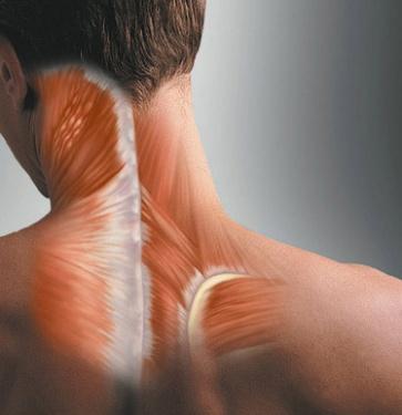Болит шея и немеет плечо