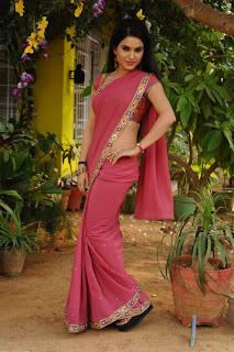 kavya singh saree shoot 7.jpg
