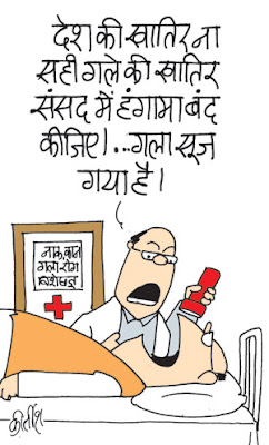 FDI in Retail, parliament, indian political cartoon