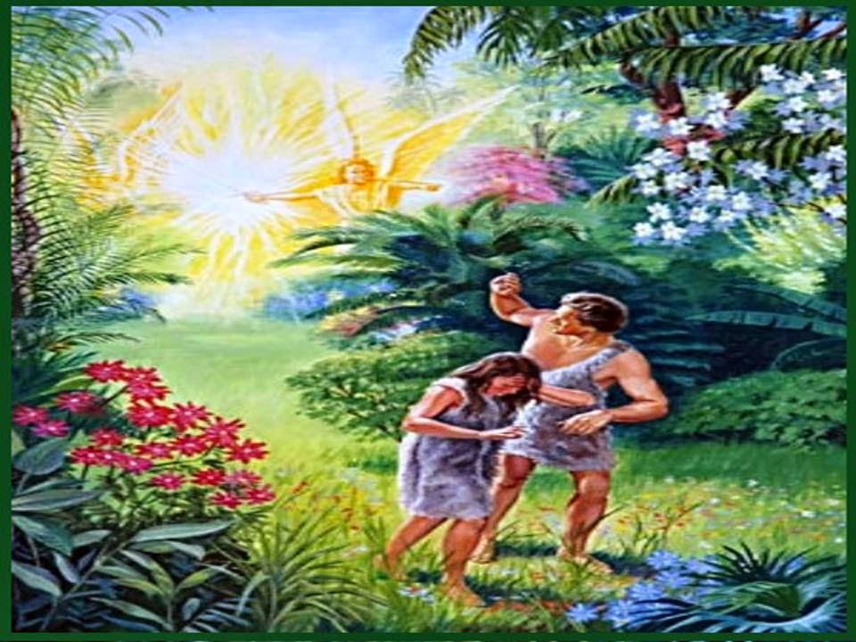 Ngeles de dios en este lugar los serafines for Los jardines del eden