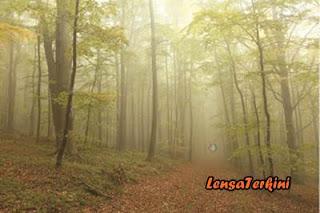 Hutan%2BNorth%2BSentinel.jpg