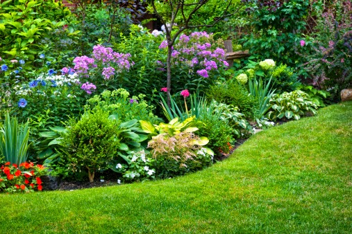 Irrigation and Lighting Specialist has offered drip irrigation system design for nearly 30 years.