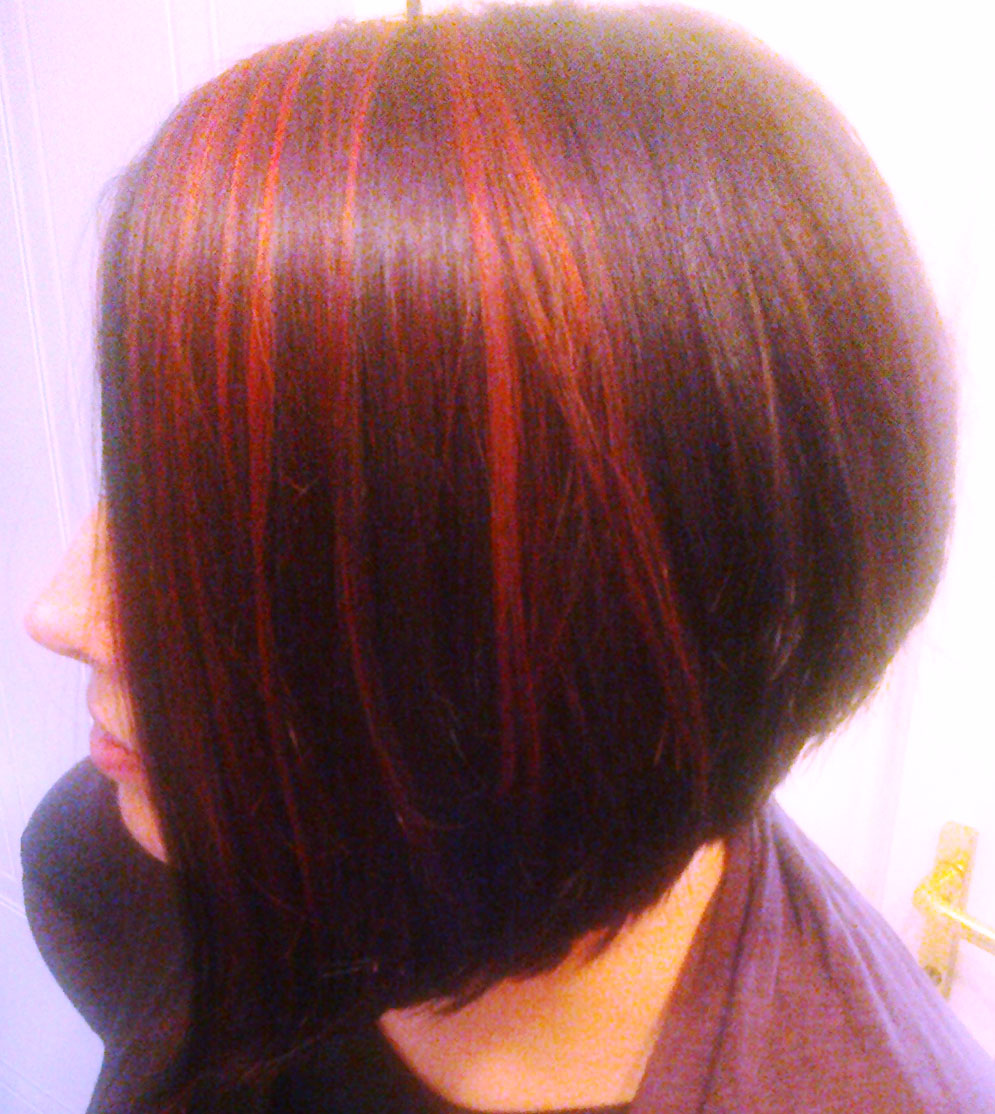 Displaying 18> Images For - Dark Hair With Copper Highlights...