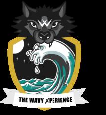 The WAVY ✗perience
