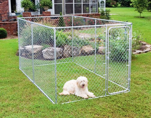 Pros and Cons of the Wire Dog Crate
