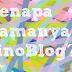 Asal Usul Nama PinoBlog