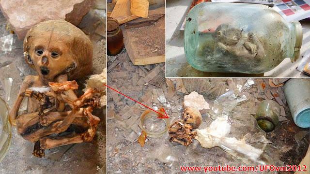 Tobolsk: Alien momifié Trouvé en laboratoire russe Abandonné
