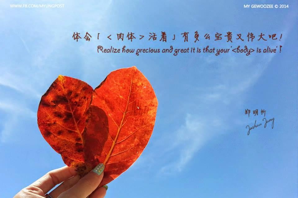 郑明析,摄理,月明洞,红叶,天空,Joshua Jung, Providence, Wolmyeong Dong, leave, sky