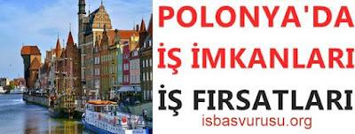 polonya-is-basvurusu